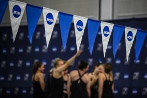 Swim Mom Musings: College Sports In The COVID Era