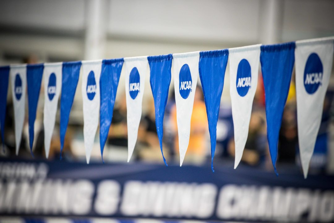 106 DI Men's Teams, 184 Women's Tabbed as CSCAA Scholar All-America Squads