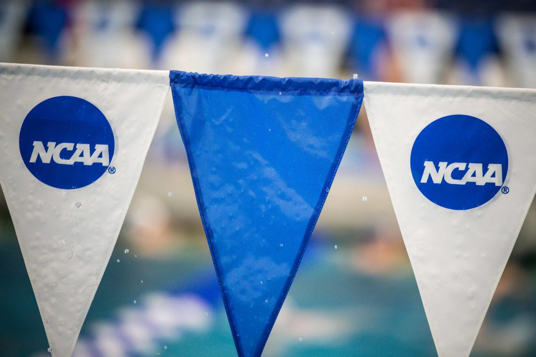 2020 NCAA Last Chance Qualifying Meets Begin this Weekend