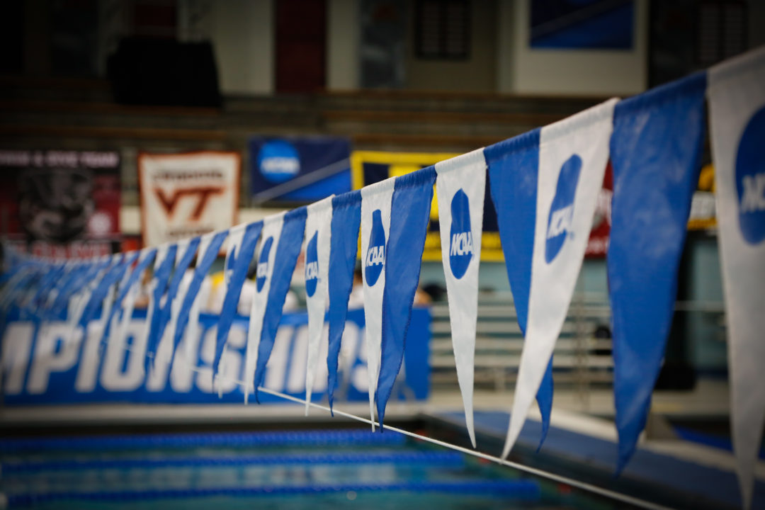 Swim Mom Musings: What Makes a College Swimmer Special