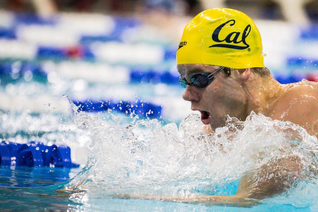 SwimSwam Pulse: 73% Pick Cal As Favorites For 2020 NCAAs