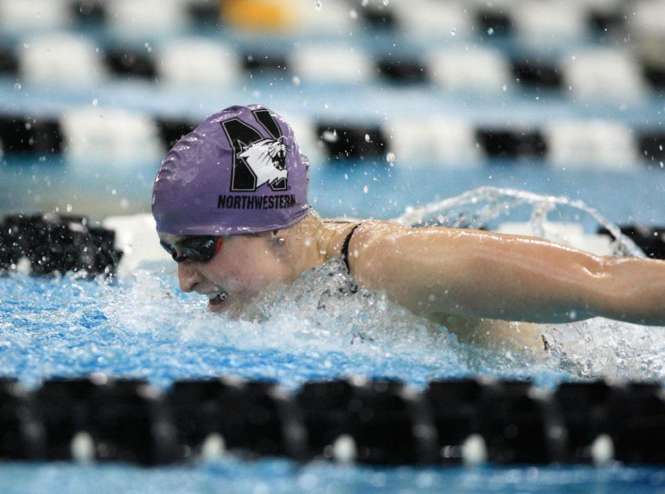 2019 Northwestern Wildcat Swim Camps – Sign Up Today
