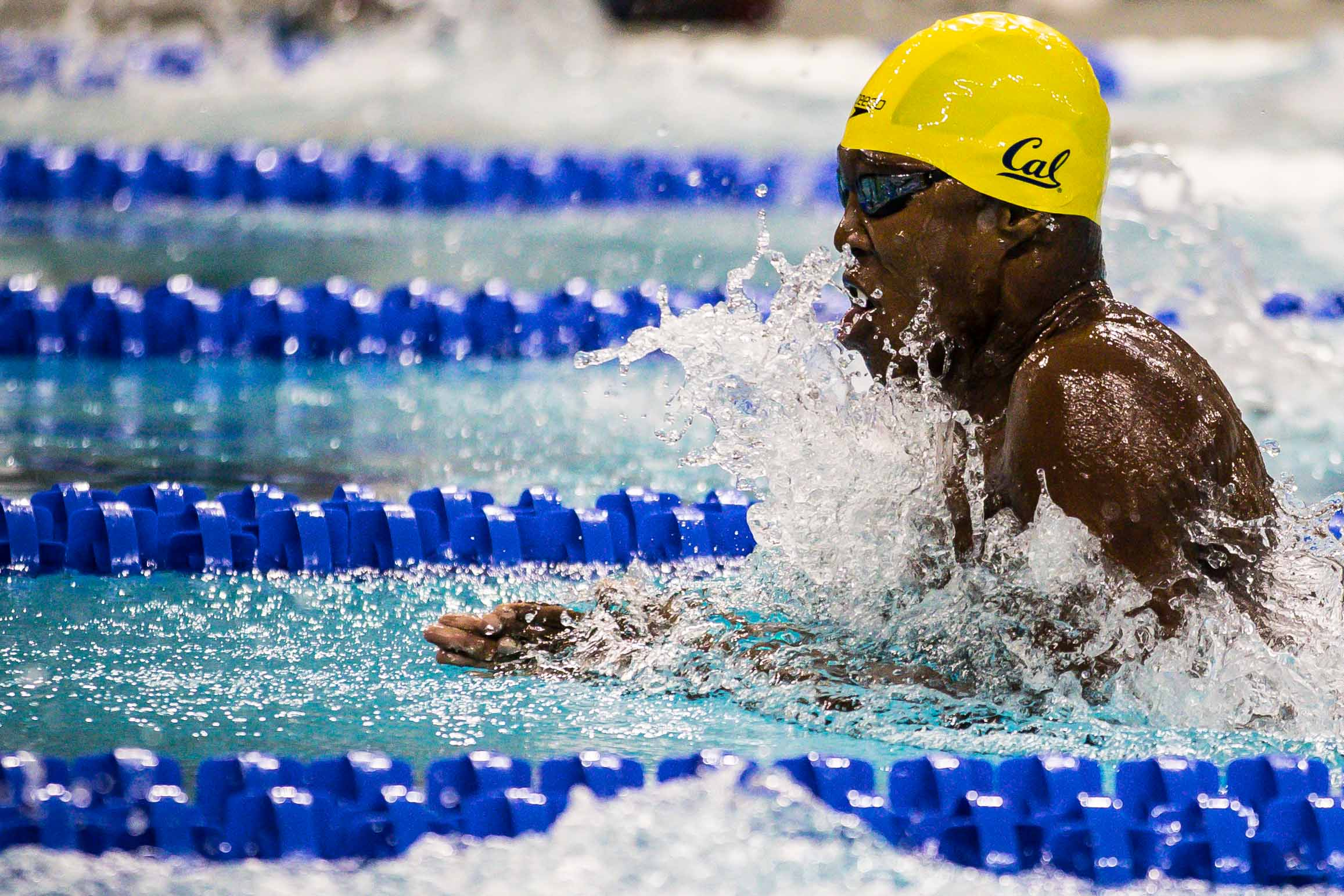 USA Swimming Announces Whitley, Foster Among Juniors For Mare Nostrum