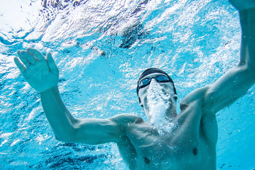 See 35 Swim Camps You Might Love