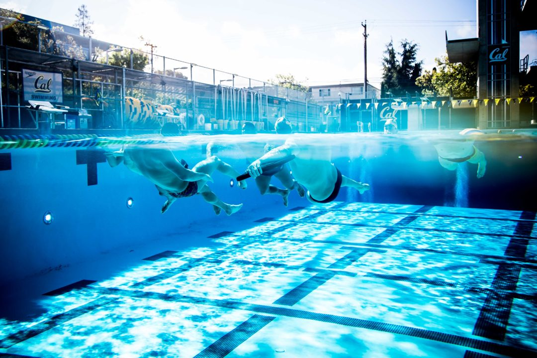 See 27 Swim Camps You Might Love