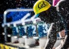 Cal's Whitley Snaps Cordes Pool Record, Gonzalez Breaks Chitwood Record vs. ASU