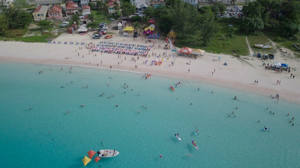 Extraordinary Swim Year Concludes with Barbados Open Water Festival