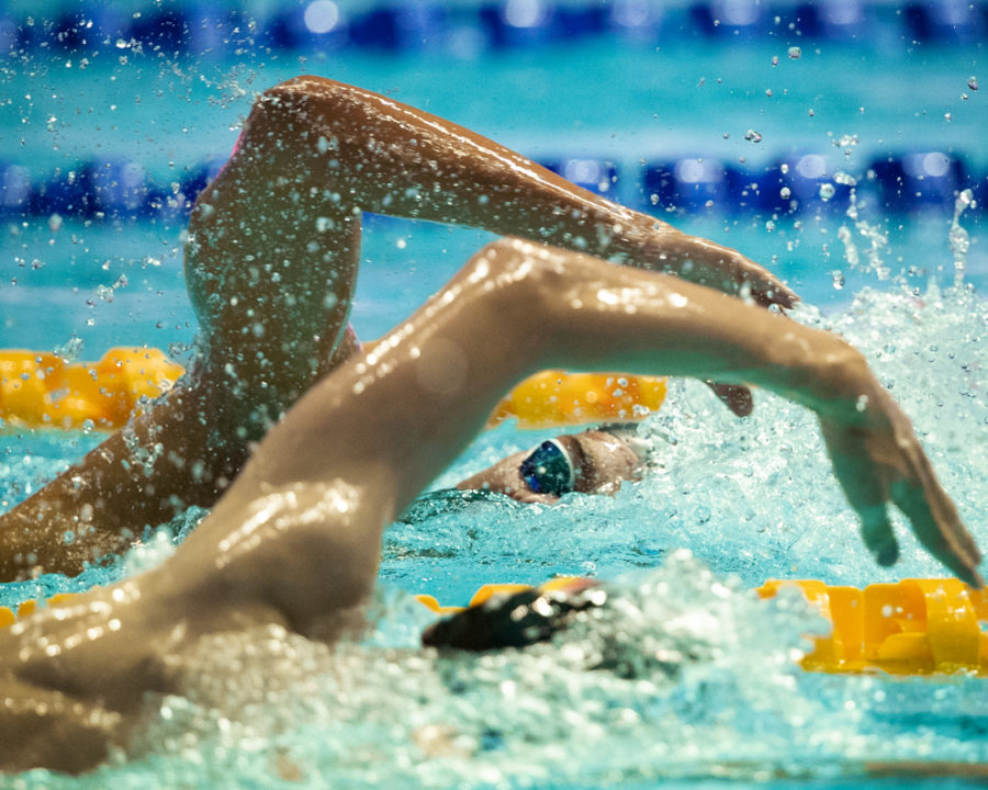 Schmidtke und Wellbrock starten beim FINA World Cup in Budapest