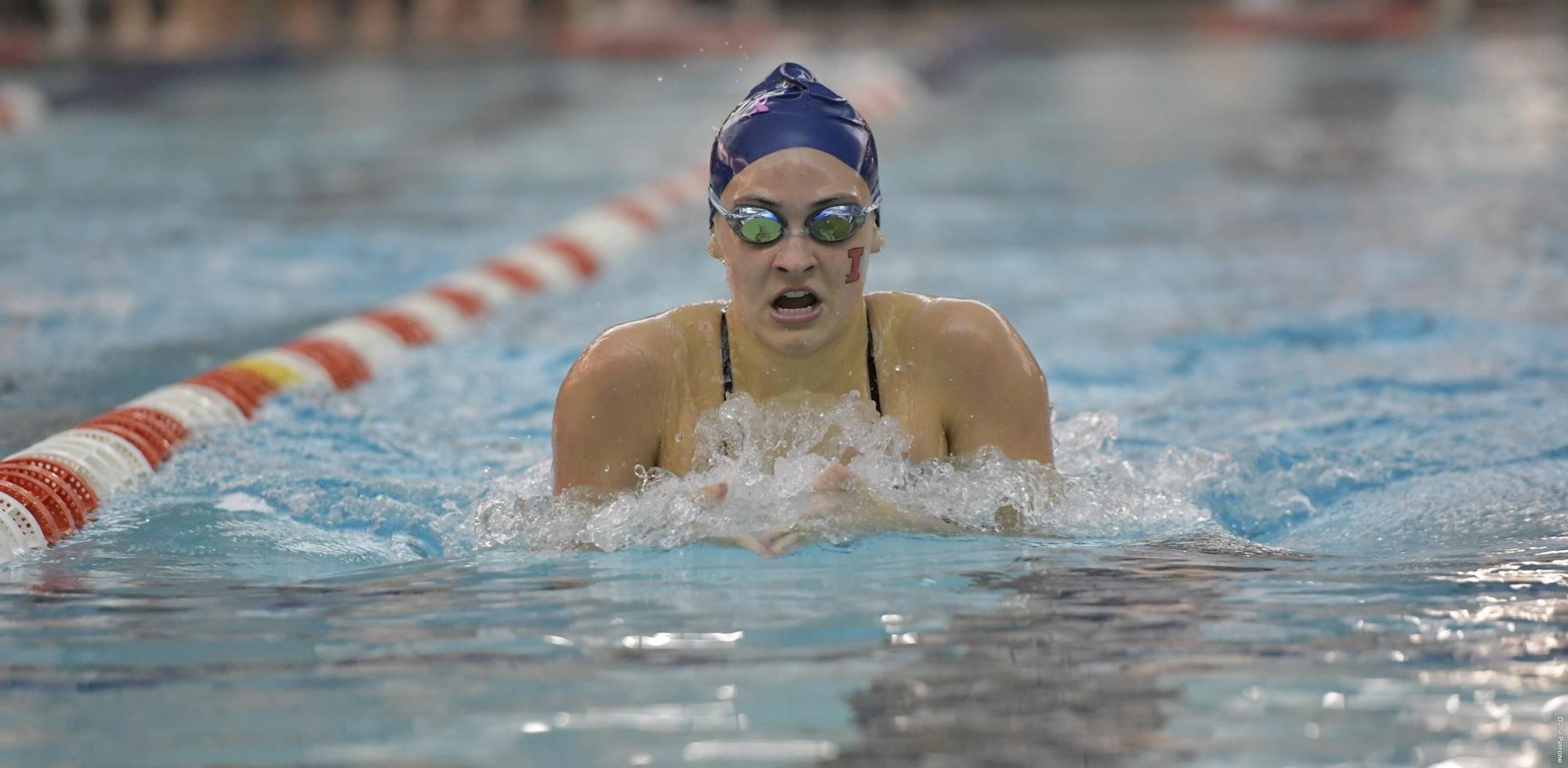 Illinois Downs Illinois State, Southern Illinois in Home Double Dual