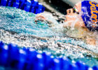 Texas Men, Florida Women Top Latest CSCAA Dual Meet Polls