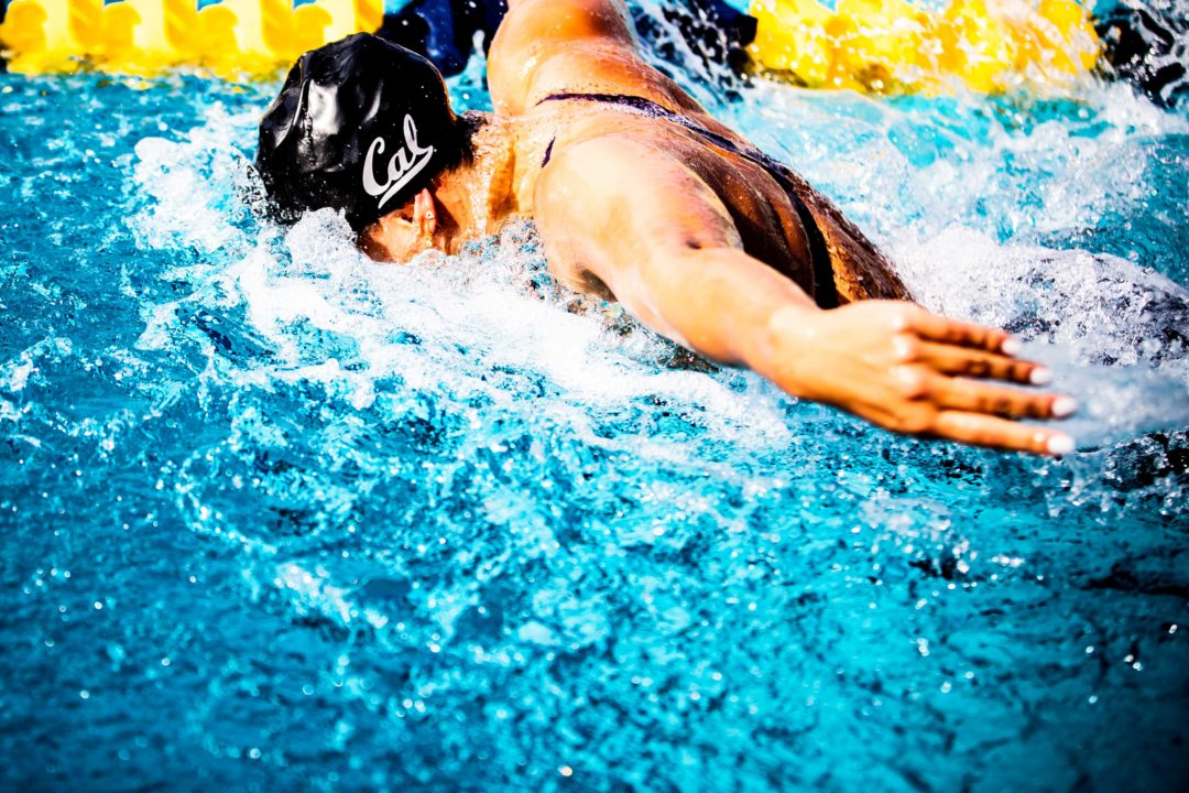 See 2280 New Swim Jobs You Might Love