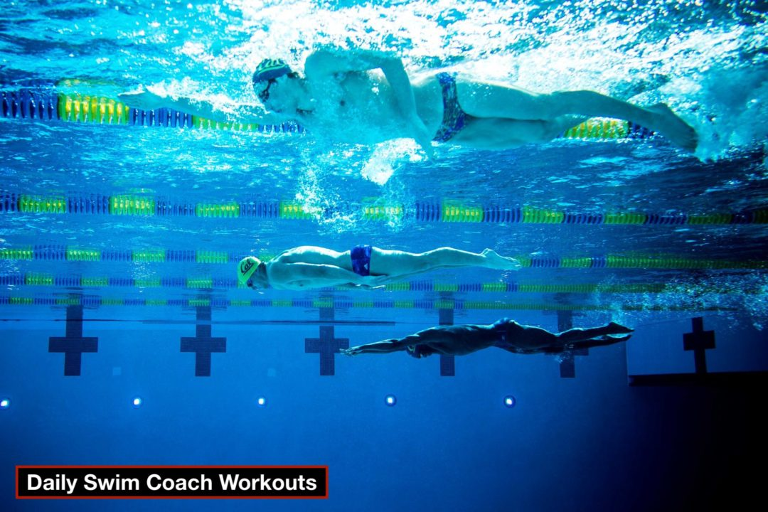 Daily Swim Coach Workout #54