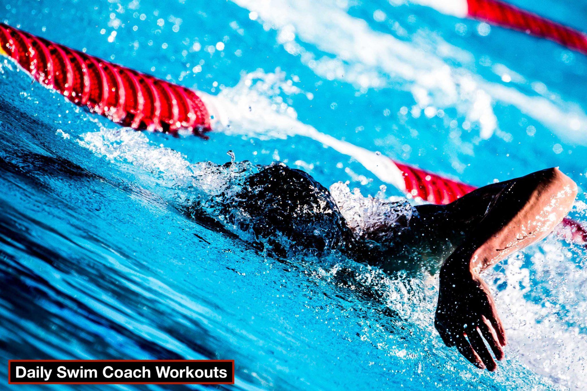 Daily Swim Coach Workout #198
