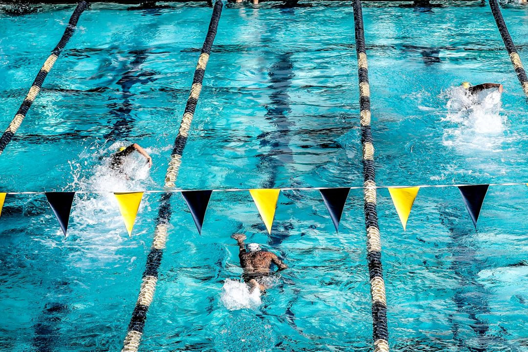 The Process is What Shapes You as a Swimmer