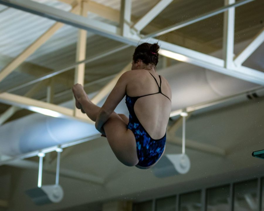 Eagles Dominate Georgia Southern Diving Invite