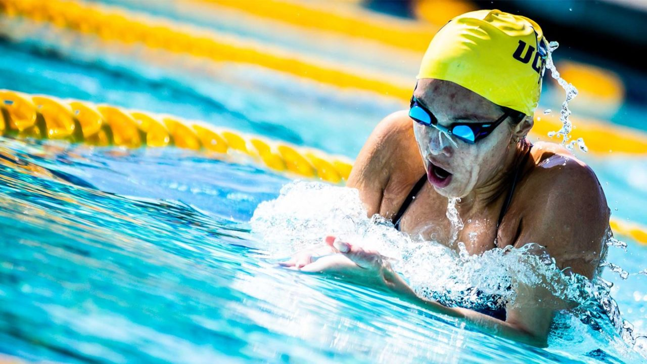 See 2239 New Swim Jobs You Might Love
