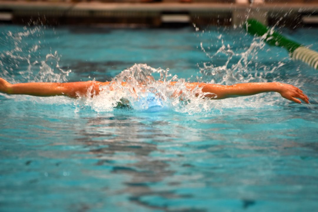 Watch: Race Videos From VHSL Class 6 Champs, Including Huske's Record 100 Fly
