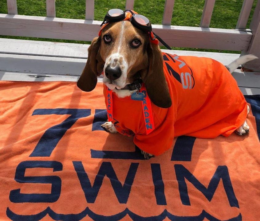 757 Swim Club Launches Team-Created Mascot Bracket Challenge