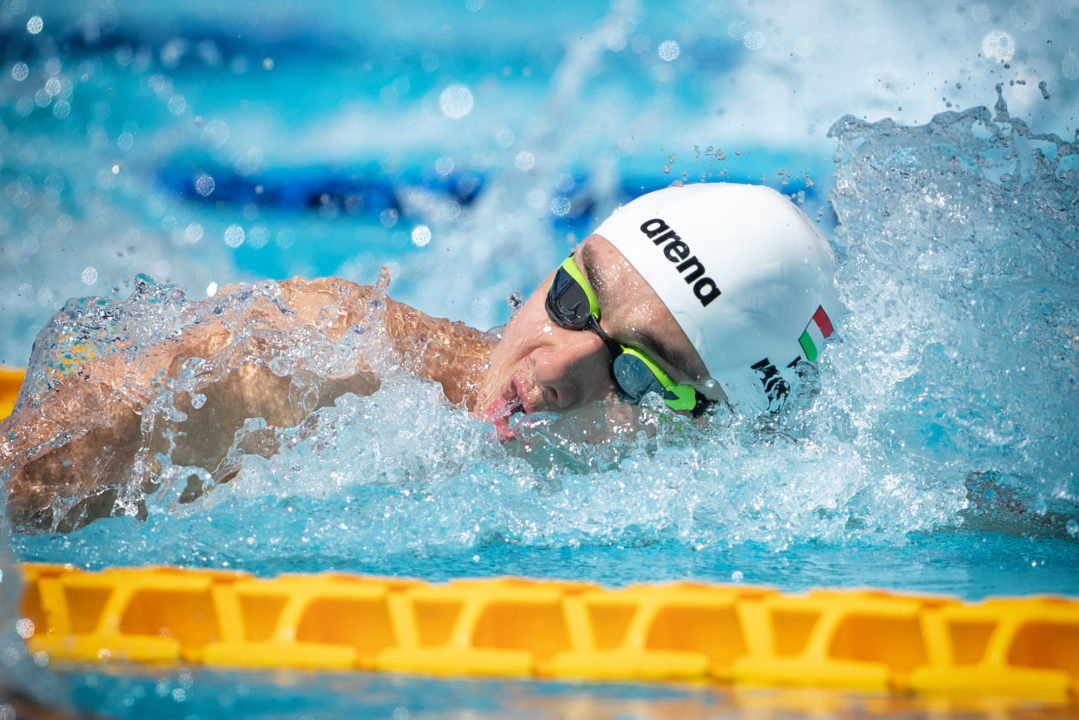 Milak, Hosszu & Cseh (In Breaststroke) Head To '4 Nations Meet'