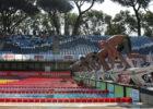 Stock pool Settecolli Rome