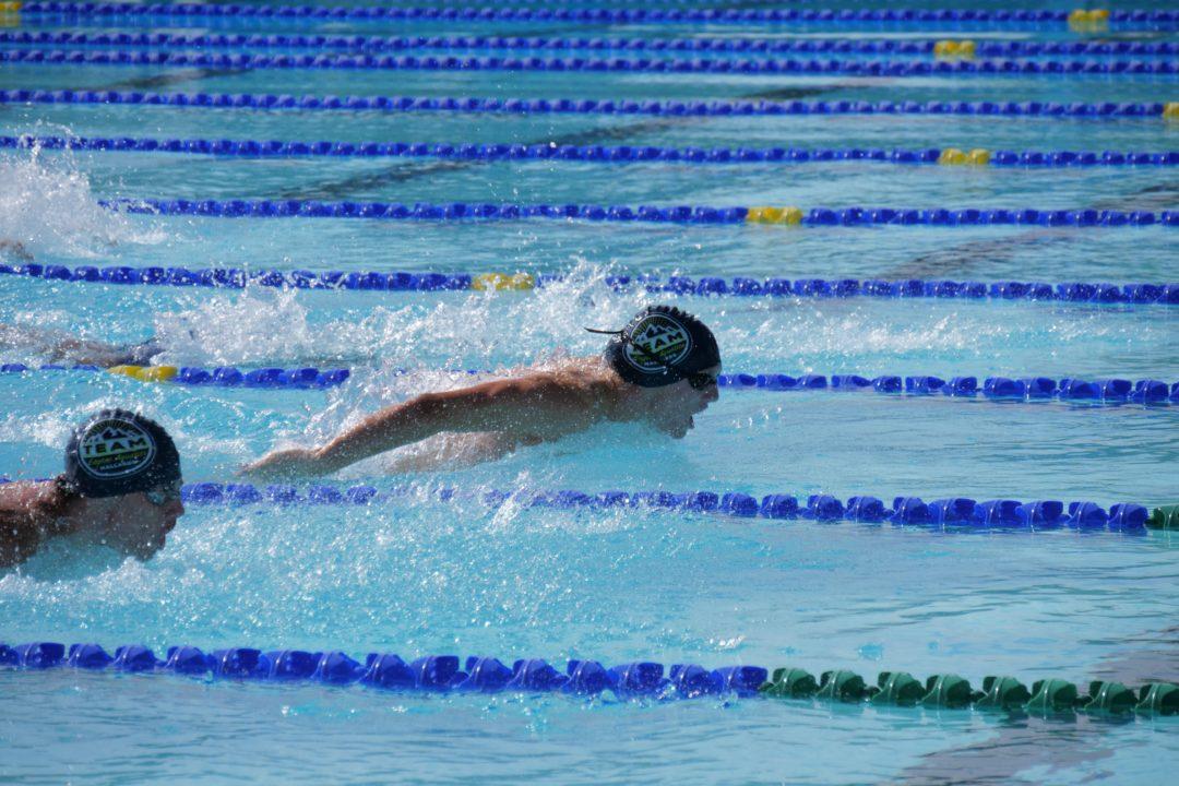 The Summer's Largest Virtual Swim Meet