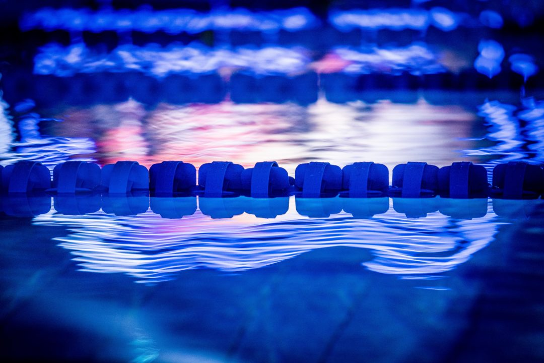 2020 International Swimming League Match 2: All the Links You Need