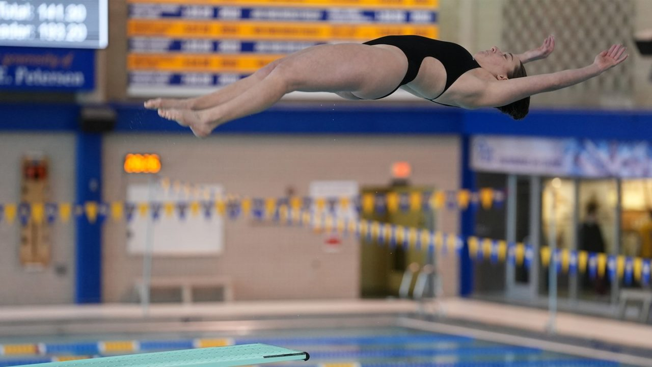 Pitt Women's Diving Tops Duquesne at Trees Pool