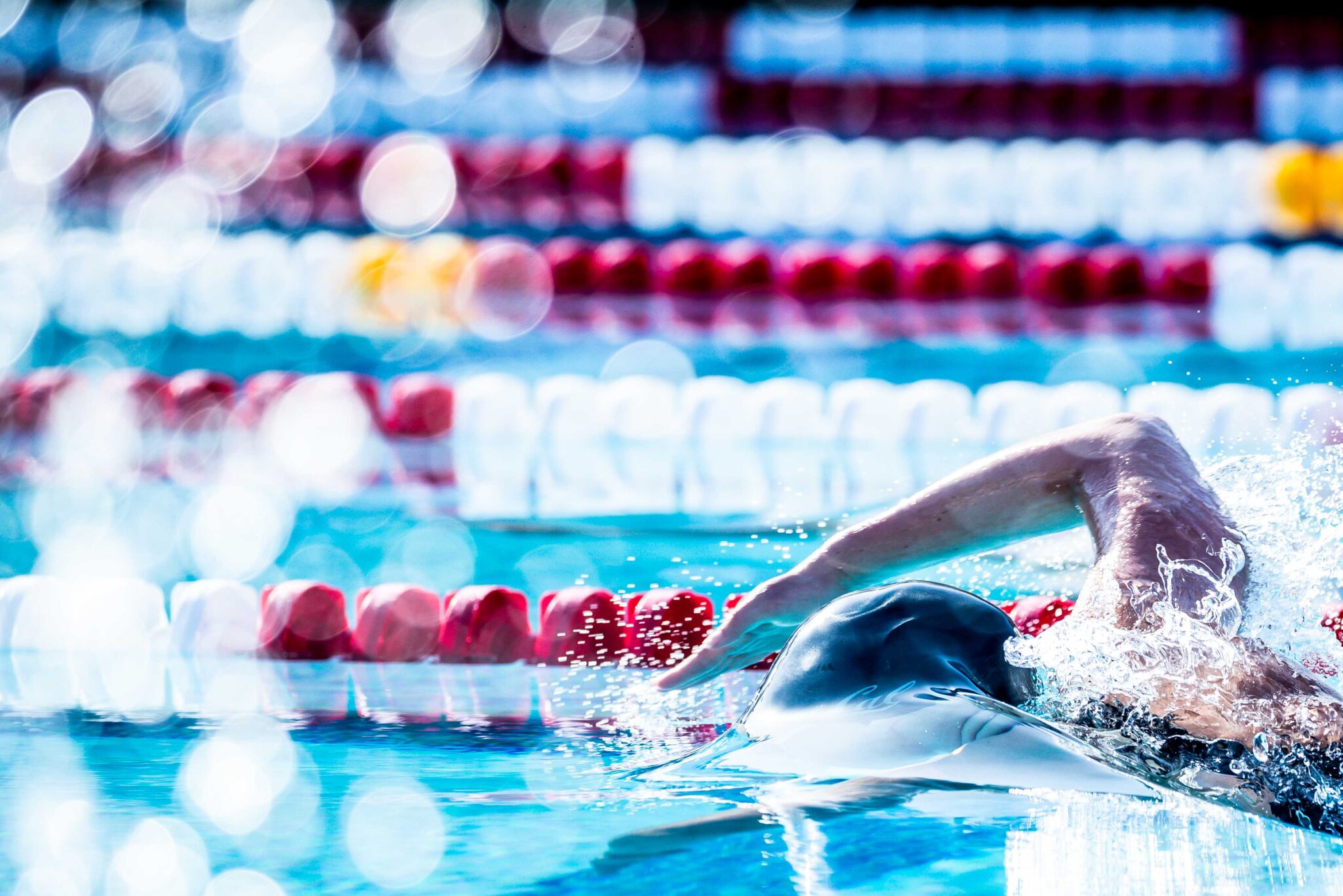 Shouts From The Stands: The Primitive Brain and Swimming