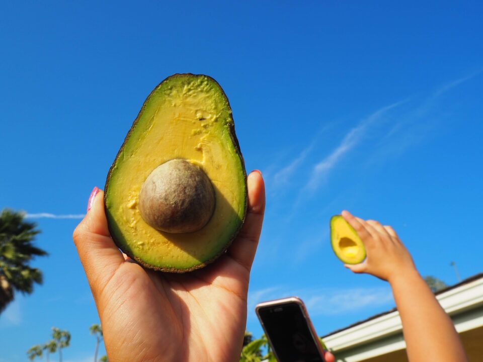 Plant-Based Performance: Why You Should Add Avocados To Your Diet